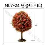 [모형나무]M07-24 단풍나무L(1그루)
